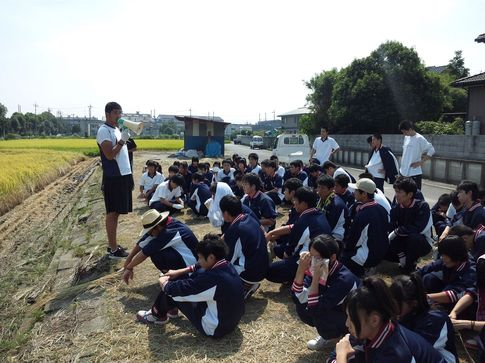20120924_rice.jpg