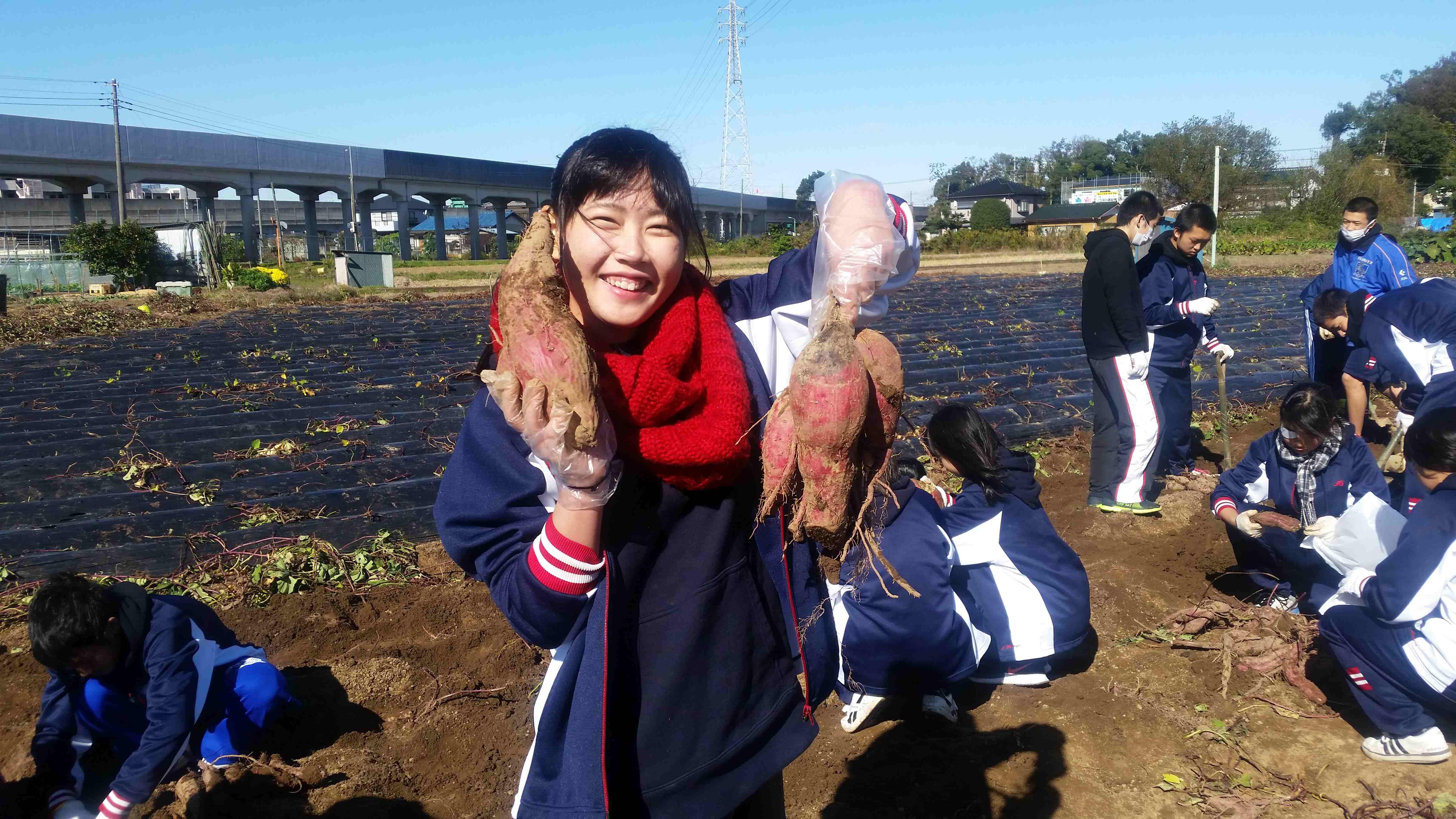 20161109_imohori2.jpg