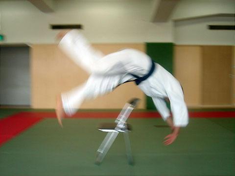 Judo%20roll.jpg