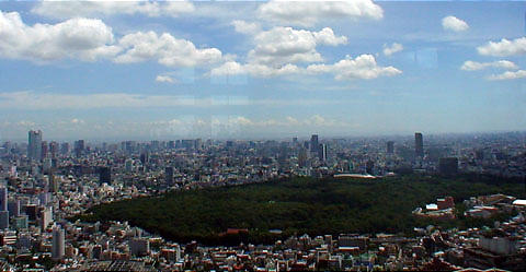 Tokyo%20and%20Yoyogi%20park.jpg