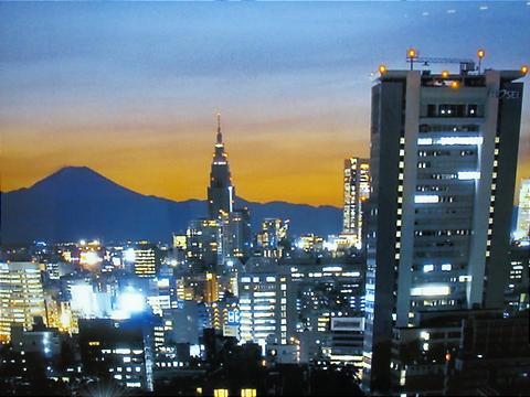 TokyoMt.Fuji.JPG
